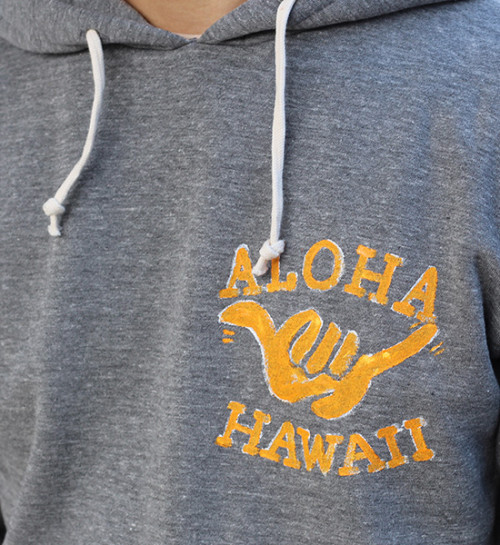 alohahawaihoody-2